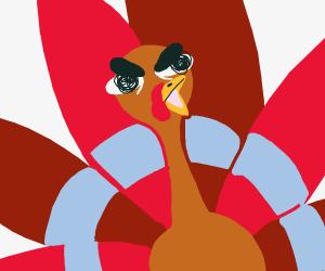 A Turkey Is In RAGE