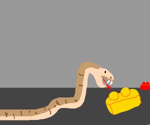 Snake prepares to bite legos