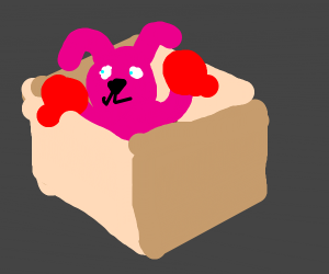Boxing Bunny in a Box