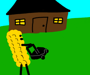 corn mowing the lawn