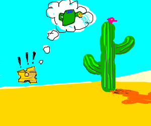 Cheese wants to water a cactus