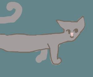 Long cat