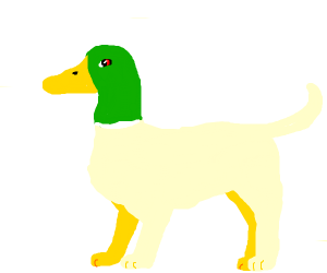 angry duck-dog hybrid