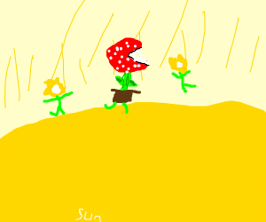 flowers dancing in sun