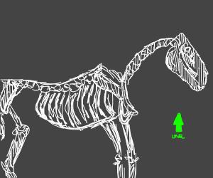 skeleton horse levels up