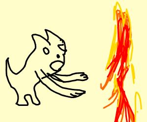 Zombie cat vs Fire man