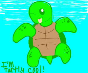 Silly Turtle