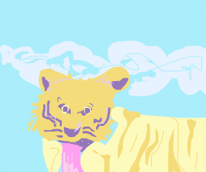 A tiger in the sky.