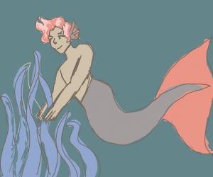a merman