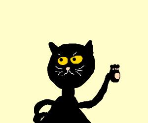 "Black cat: ""pssh, it's whatever"""