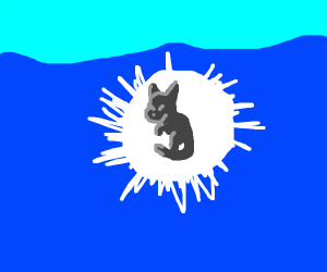 Cat In Water With White Aura