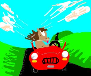 Horse on car