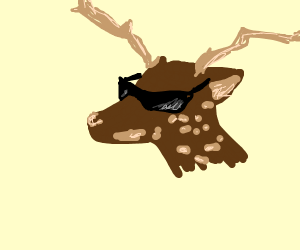 deer wearing sunglasses
