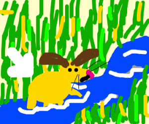 dog with blonde hair standing on a river