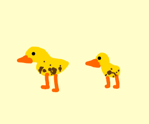 Spotted Ducks