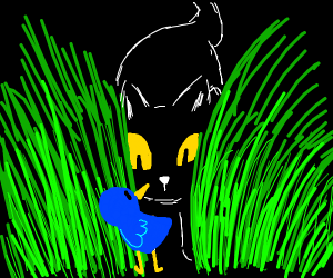 cat tries to catch bluebird