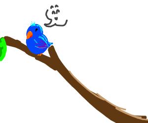 happy blue bird enjoying life