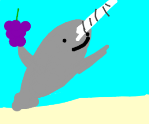 narwhal holding grapes