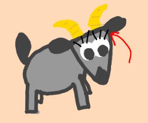 billie goat eye-lash