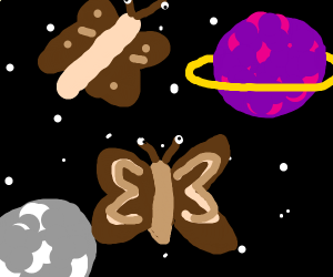Moths in space