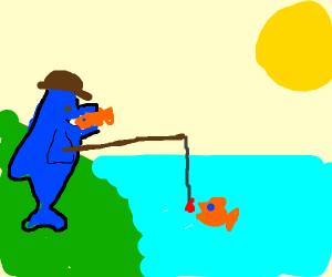 Anglerfish eating a goldfish