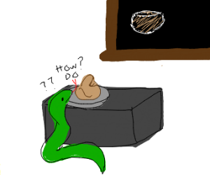snake goes for pottery lessons