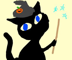 magic Halloween cat?