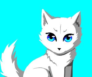 Cute white wolf
