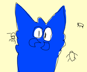 Blue cat with spider nose hanging w/ bugs