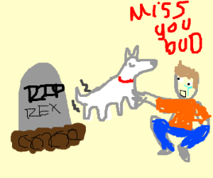 grieving a pet by touching his ghost nicely
