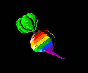 LGBTQ Radish