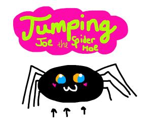 spider jumping