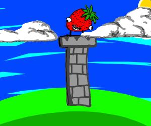 High strawberry