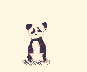 tiniest cutest panda