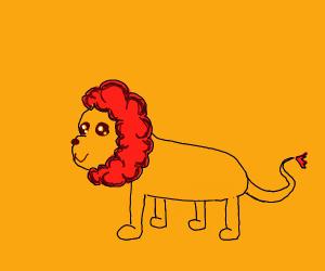 A cute lion