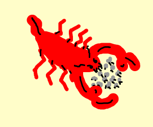 Angry sheep eating lobster