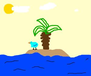 Blue borb on an island
