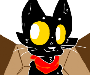 Black cat in a cardboard box.
