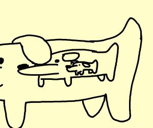 Dogception