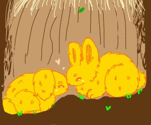 Yellow bunnies fall in love