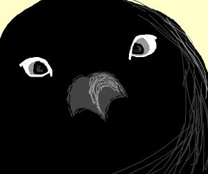 Bird beak extreme closeup