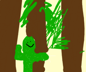happy cactus in a forest of trees