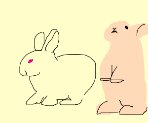 Bunny and pink bunny