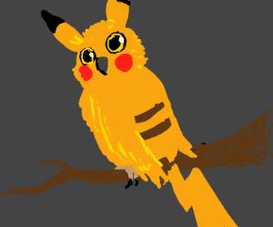 Pikachu the Owl