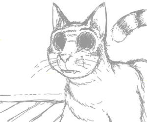 cat with eye sockets
