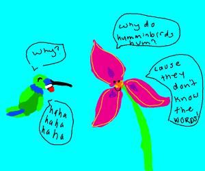 Hummingbird is unamused
