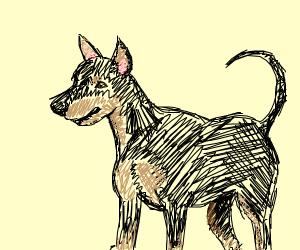 Miniature Pinscher (dog breed)