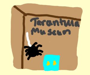 Tarantula Museum