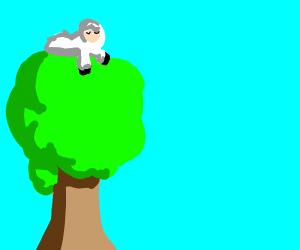 Sheep on a tree