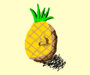 What in tarnation- A pineapple with a nose